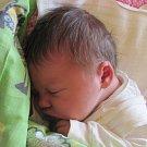 Jmenuji se JULINKA JANKOVÁ, narodila jsem se 25. května, při narození jsem vážila 3640 gramů a měřila 49 centimetrů. Rodiče se jmenují Eva a David. Doma se na mě těší sestřička Josefínka. Bydlíme ve Starých Heřminovech.