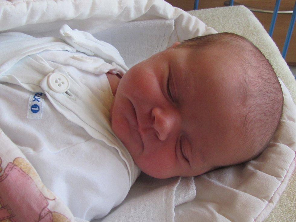 Jmenuji se ELLA ŠNIRCHOVÁ, narodila jsem se 7. dubna 2019, při narození jsem vážila 3670 gramů a měřila 51 centimetrů. Krnov