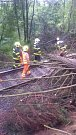 Odstraňování stromu spadlého v bouřce na trať u Rýmařova.