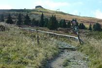 Podle přírodovědců, lesníků a ekologů, kteří studují ekosystémy na hřebenech Jeseníků, jsou zdejší acidofilní smrčiny, luční a borůvková společenství i arkto-alpinská tundra tím nejcennějším, co může příroda v České republice nabídnout.