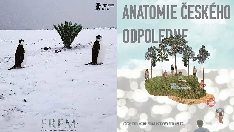 Koláž plakátů nominovaných snímků krnovských tvůrců.