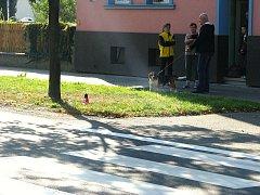 Sousedé se v sobotu ráno baví o noční tragédii, která se jim odehrála přímo pod okny. Policejní auto při pronásledování ujíždějícího BMW zde srazilo mladý pár.
