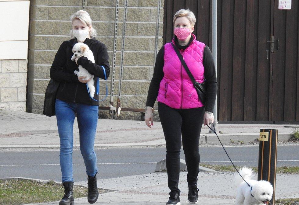 Majitelé psů při venčení díky koronavirovým opatřením mají dostatek podnětů k přemýšlení, jak se asi cítí pes s náhubkem.