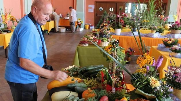 Ovoce, zelenina a jejich zajímavá aranžmá plní do neděle 10. srpna hlavní sál bruntálského Společenského domu. Výstava zahrádkářských výpěstků pokračuje.