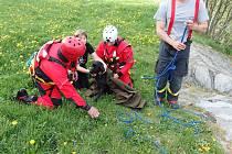 Snímek ze zásahu bruntálských hasičů u záchrany černého labradora v Bruntále.