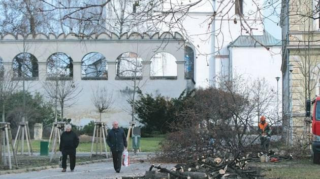 O víkendu se v krnovských Smetanových sadech rozezněly motorové pily, k zemi šlo šestnáct javorů.