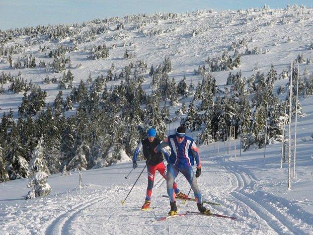 Gymnazisté-lyžaři se budou nadále připravovat k rekordním výkonům ve Ski aréně ve Vrbně pod Pradědem i na dalších jesenických kopcích.