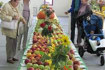 Výstava ovoce a zeleniny v paláci Silesia představila to nejlepší, co se letos urodilo na zahrádkách. Doplnila ji kolekce bylinek, dekorací, bonsaí a dřevin i ochutnávka různých druhů jablek.