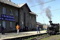 Gontulák je úzkorozchodná parní lokomotiva vyrobená v roce 1928 pro slovenské lesní železnice.
