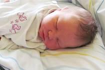 Jmenuji se MAXIM BÖHM , narodil jsem se 22. září, při narození jsem vážil 3835 gramů a měřil 50 centimetrů. Moje maminka se jmenuje Anna Böhmová a můj tatínek se jmenuje Miroslav Tůma. Bydlíme v Býkově.