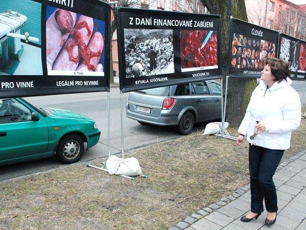 Stop genocidě je kampaň zaměřená proti potratům, která po tři dny formou drastických fotografií srovnává oběti holocaustu, popravy nebo masakry ve Rwandě či vKambodži sinterrupcí.