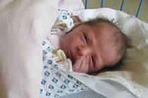Jmenuji se HELENA DIRDOVÁ narodila jsem se 5. června, při narození jsem vážila 2760 gramů a měřila 46 centimetrů. Moje maminka se jmenuje Alena Kuchtová a můj tatínek se jmenuje David Dirda. Bydlíme v Rýmařově.