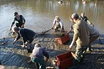 Edrovický rybník zažil mravenčí hemžení. Svátkem rybářů byl podzimní výlov, ale v sítích chyběli velcí kapři. Ve vodách ponechali pytláci jen tři z celkem třinácti vysazených kaprů.