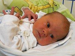Jmenuji se DOMINIK OLIVERIUS, narodil jsem se 31. prosince, při narození jsem vážil 3520 gramů a měřil 50 centimetrů. Moje maminka se jmenuje Martina Pavlíčková a můj tatínek se jmenuje Pavel Oliverius. Bydlíme ve Městě Albrechticích.