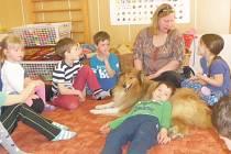 Kolie Kuky má do školky vstup povolen. Libuše Kulawiak má pro canisterapii vycvičeno osm psů, přijít ale může i s jinými zvířaty.