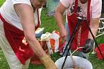 Uvařit co nejchutnější guláš, doplivnout co nejdále oříšek, zdolávat rekord v hodu vejcem dvojic nebo útočit na soupeře šlehačkou, to vše bylo možné v sobotu 14. srpna v Ludvíkově.