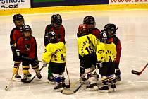 Krnovské hokejové naděje. Děti se do sportu hrnou čím dál méně, radši sedí doma u počítačů. Všude se snaží děti do sportu zapojit, v Krnově se to ne úplně daří.