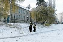 Bývalý dům služeb v Bruntále byl během kalamity v obležení popadaných dřevin. Odklízení se chopili městští policisté i hasiči.