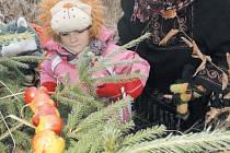 Vánoční stromek, na kterém si pochutnají zvířátka, nastrojí v pondělí děti v Zámeckém parku Město Albrechtice.