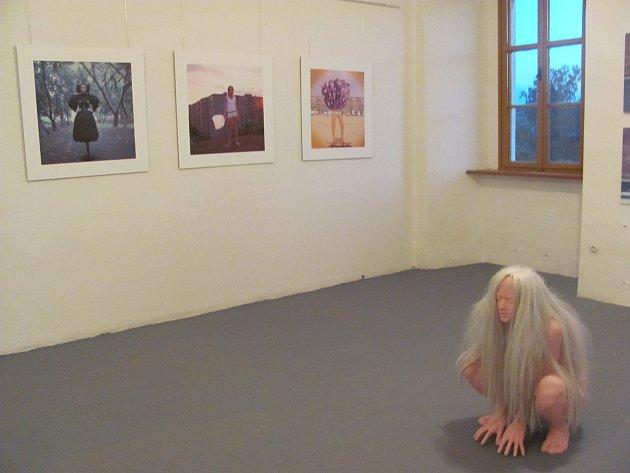 Výstava realistických aktů Davida Moješčíka, zámek ve Slezských Rudolticích, rok 2016.