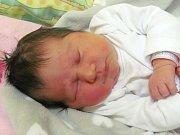 Jmenuji se EMA ŠTEFANÍKOVÁ, narodila jsem se 16. ledna, při narození jsem vážila 3440 gramů a měřila 48 centimetrů. Moje maminka se jmenuje Jana Juřicová a můj tatínek se jmenuje Jiří Štefaník. Bydlíme v Jeseníku.
