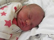 Jmenuji ADÉLA MIKEŠOVÁ, narodila jsem se 2. Ledna 2019, při narození jsem vážila 3150 gramů a měřila 47 centimetrů. Leskovec nad Moravicí