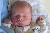 Jmenuji se TOMI TORÁČ, narodil jsem se 29. října, při narození jsem vážil 3070 gramů a měřil 48 centimetrů. Maminka se jmenuje Miluše Krajčovičová a tatínek se jmenuje Patrik Toráč, doma na mě čeká bratříček Leonek. Bydlíme v Jindřichově ve Slezsku.