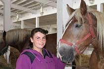 Zuzana Juráňová se chovu koní rasy norik věnuje už od svých patnácti let.