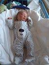 Jmenuji se Adámek Kaňok, narodil jsem se 4. ledna2019. v Krnovské porodnici, při narození jsem měřil 50 cm a vážil 3900 gramů.
