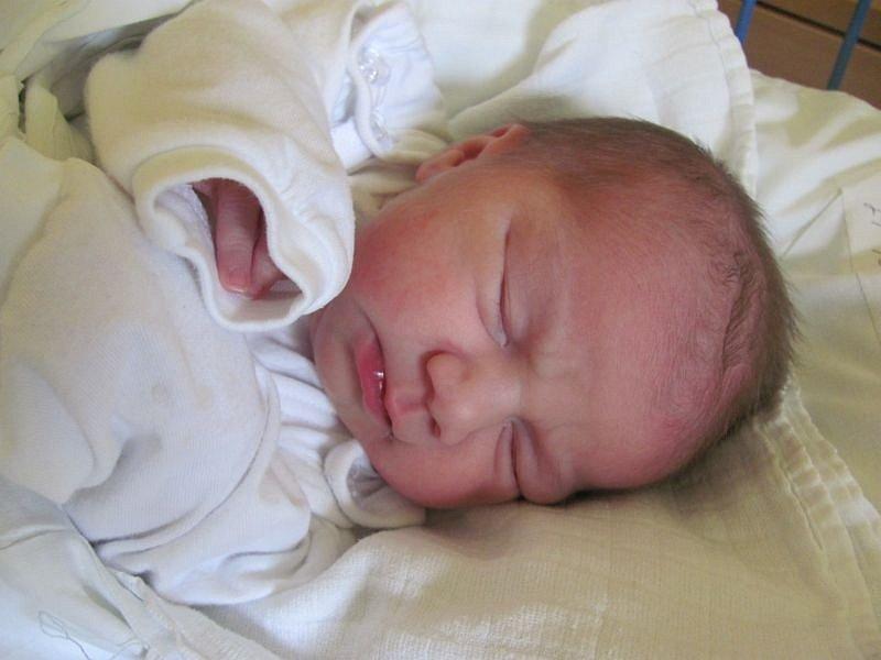Jmenuji se VANESA KALEJOVÁ a narodila jsem se 24. října 2012, měřila jsem 43 centimetrů a vážila jsem 2515 gramů. Moje maminka se jmenuje Růžena Kalejová a tatínek se jmenuje Jan Pecha. Bydlíme v Krnově.