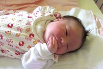 Jmenuji se ANIČKA BAJEROVÁ, narodila jsem se 23. června, při narození jsem vážila 3560 gramů a měřila 48 centimetrů. Moje maminka se jmenuje Aneta Bajerová a můj tatínek se jmenuje Jan Bajer. Bydlíme ve Vrbně pod Pradědem.