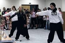 Kulturní vystoupení zajistilo Středisko volného času Méďa v Krnově. Účastníkům slavnostního setkání se představili členové zájmového kroužku Kytara i tanečníci z taneční formace Dance For Life.