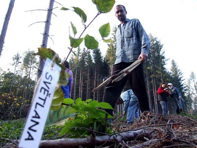 Svůj strom si přišli na oplocenou paseku zasadit také klienti krnovského střediska sociální rehabilitace Rút a pomáhali jim při tom pracovníci Slezské Diakonie.