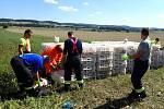 Zásah hasičů u havarovaného kamionu s kuřaty.