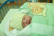 Jmenuji se NINA MAJEROVÁ, narodila jsem se 4. Prosince, při narození jsem vážila 3280 gramů a měřila 49 centimetrů. Můj tatínek se jmenuje Radovan a maminka Veronika. Krnov
