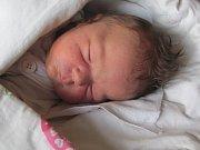 Jmenuji se VIKTORIE PAVLÁSKOVÁ, narodila jsem se 24. Října 2017, při narození jsem vážila 3945 gramů a měřila 51 centimetrů. Moje maminka se jmenuje Kristýna Judasová a můj tatínek se jmenuje Roman Pavlásek. Bydlíme ve Městě Albrechticích.