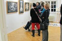 Výstava Salon neprofesionálních umělců. Ilustrační foto.