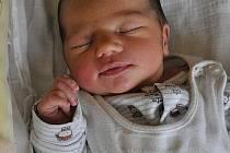 Hanička Petrželová, narozena 28.6.2011, váha 3,06kg, míra 49cm, Václavov u Bruntálu. Maminka Dagmar Petrželová, tatínek Květoslav Petržela.