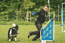 Border kolie je všestranné plemeno, takže má předpoklady dosáhnout souznění se svým pánem. Pokud dostane tak kvalitní kynologický výcvik jako Arrow Jany Křivkové, může na soutěžích sklízet medaile.