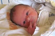 Jmenuji se MICHAL KOCIÁN, narodil jsem se 21. února, při narození jsem vážil 2880 gramů a měřil 47 centimetrů. Moje maminka se jmenuje Jana Botková a můj tatínek se jmenuje Radek Kocián. Bydlíme v Liptani.