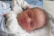 Jmenuji se TOMÁŠEK ŠPOK,narodil jsem se 20. dubna, při narození jsem vážil 3445 gramů a měřil 49 centimetrů. Moje maminka se jmenuje Marie a tatínek David, doma se na mě těší sestřička Lenička a bráška David. Společně bydlíme v Krasově.