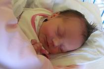 Jmenuji se ALENKA TOPORSKÁ a narodila jsem se 29.října 2012,měřila jsem 47 centimetrů a vážila jsem 2820 gramů.Moje maminka se jmenuje Monika Hrouzová a tatínek se jmenuje Josef Toporský.Bydlíme v Krnově.