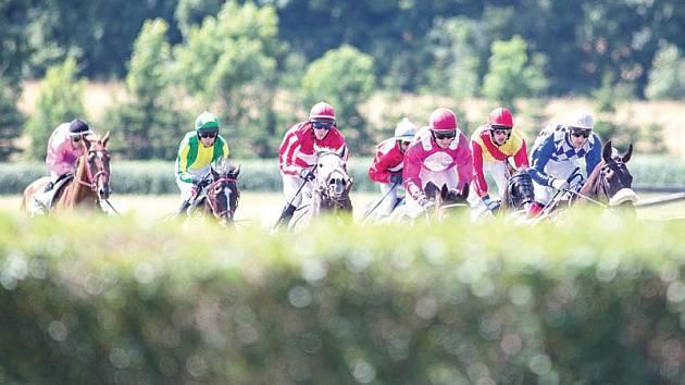 Na dostihový den do Světlé Hory se v sobotu sjedou nejlepší koně a jezdci z celé republiky.