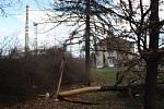 Po noční vichřici zůstaly některé části Krnova bez proudu, například Ježník. Stromy padaly například v Chářovském parku a na sídlišti pod Cvilínem.