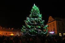 Rýmařovský vánoční strom byl pro letošní rok přivezen z městské části Janovice a měřil sedmnáct metrů.
