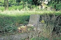 Hřbitov v Krásných Loučkách je na prodej i s kaplí za tisíc korun. Město se rádo zbaví zaniklého historického hřbitova, se kterým si už dlouho neví rady.