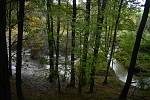 Třístupňová kaskáda bobřích hrází v Lužné byla přírodovědnou atrakcí Osoblažska. Po povodni z ní zbyly jen protržené hráze a rozbahněná plocha, která připomíná rozlohu zátopové oblasti.
