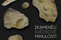 V Krnově 5. srpna zahájí vernisáž výstavu zkamenělin ze sbírky Martina Čajana.