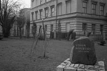 Krnovský fotograf Gustav Aulehla zdokumentoval příběh krnovské lípy republiky z roku 1968 obrazem. Kronikář Vladimír Blucha ho zaznamenal slovem.  Divákům lípu představila Česká televize.
