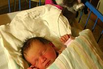 Klárka Janalíková z Bruntálu narozená 27.2.2011 v 16:07, míra 49 cm, váha 3050g. Maminka Lucie Janalíková, tatínek Tomáš Janalík.